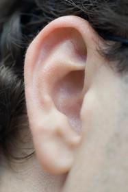Прыщи и черные точки на ушах