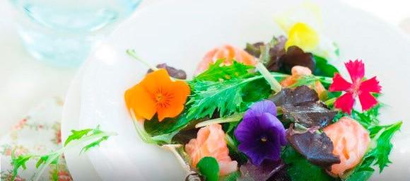 салат с цветами и лаймовым лососем